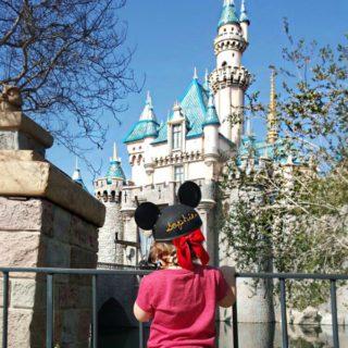 Our Trip To Disney