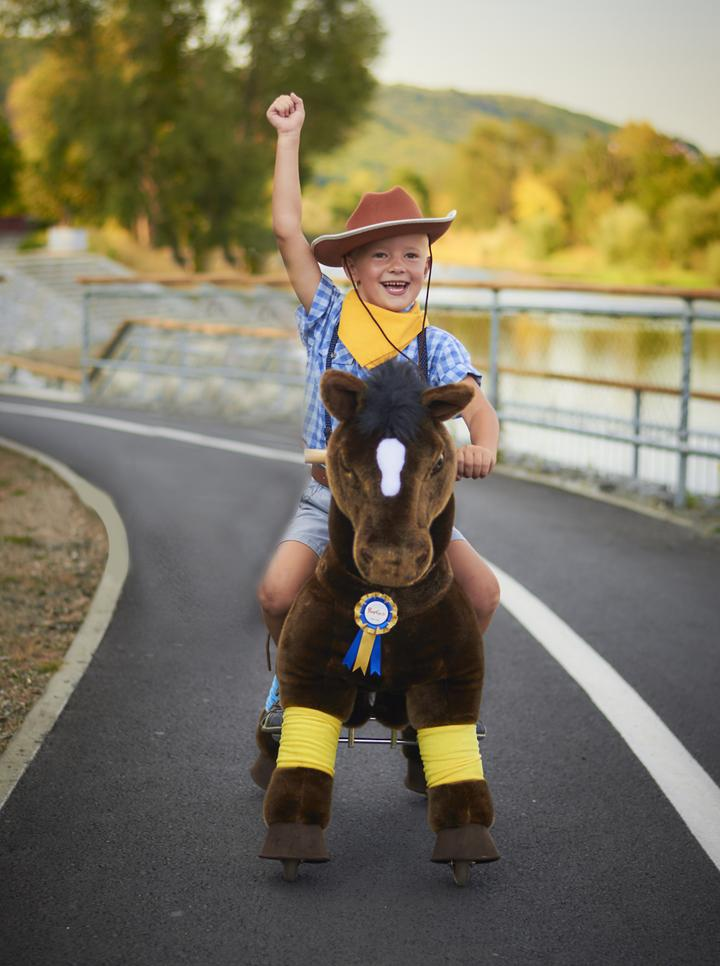 boy riding on pony