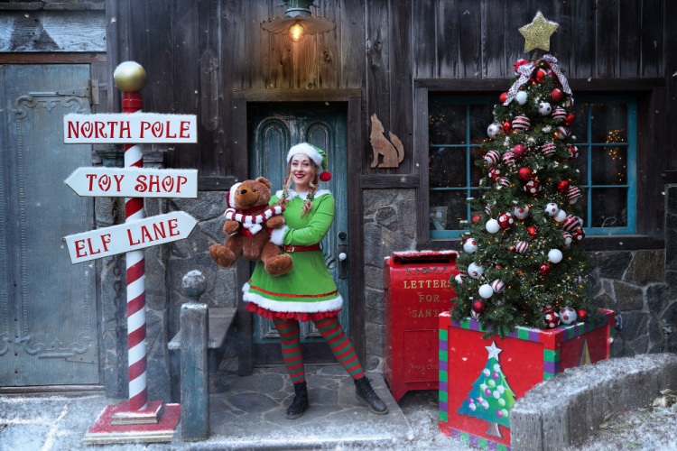 Elf at Santa The Experience